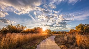 Fall-Light-on-Cherry-Creek-Trail