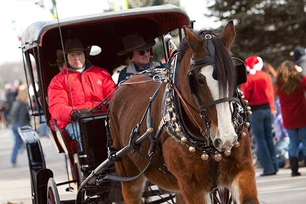 Christmas Carriage Parade 2018