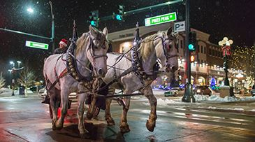 Holiday-Carriage-Rides
